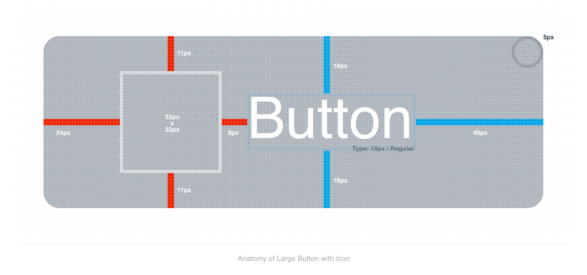 Anatomy of Large Button