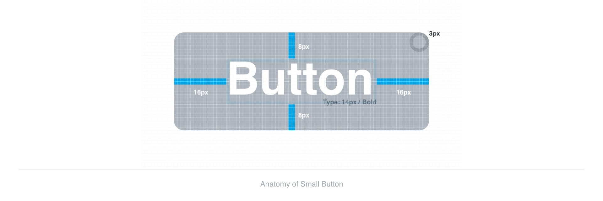 Anatomy of Small Button